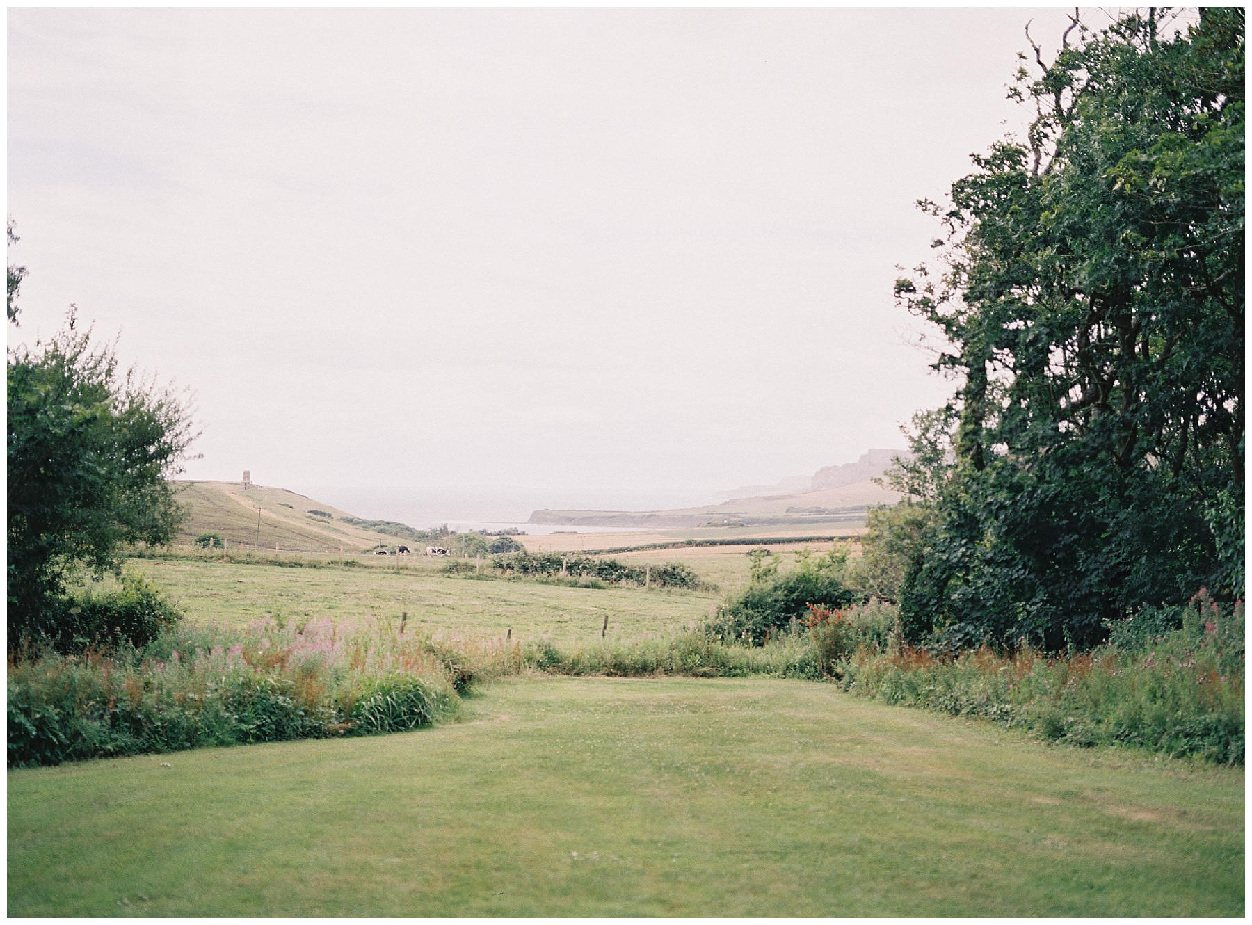 view of kimmeridge bay from smedmore house
