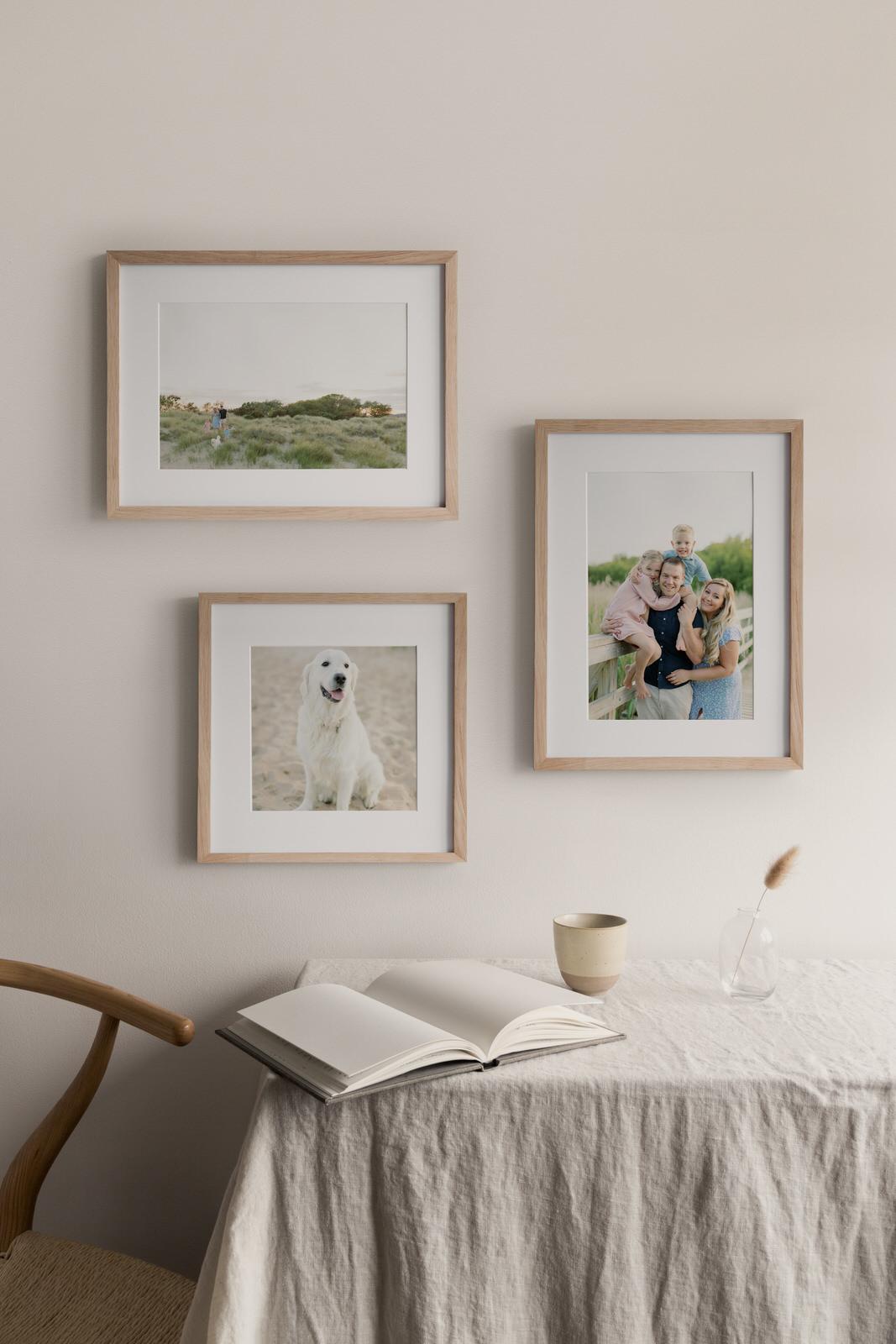 3 frame